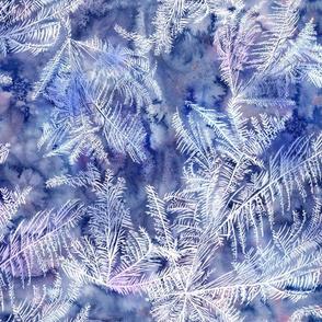 frost flora winter