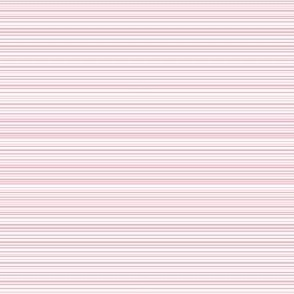 Petite Pink Stripe