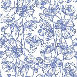 Petite Blue Poppies