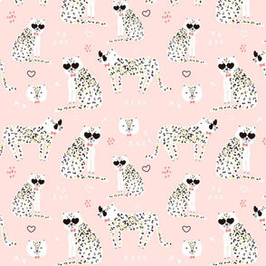 cute cheetah in sunglasses