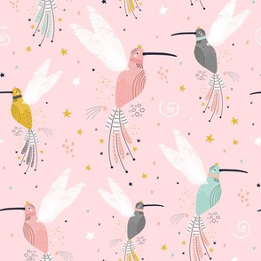 Fairy hummingbirds