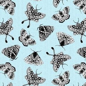 Moths Textured V.02 - Blue