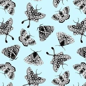 Moths V.02 - Blue