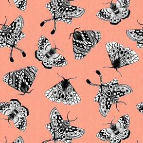 Moths Textured V.02 - Coral