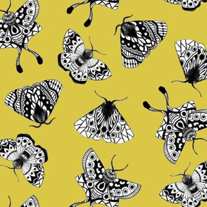 Moths V.02 - Moss Green