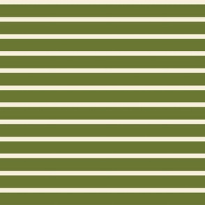 Green Cream Stripe