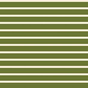 Green Cream Stripe