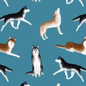 Siberian Husky Pattern (Teal Background)
