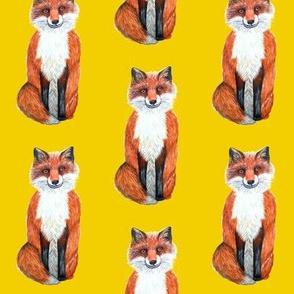 fox cub on yellow