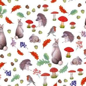 rabbit, hedgehog, robin, red mushroom