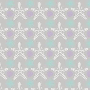 Sea Stars or Starfish & Sea urchins