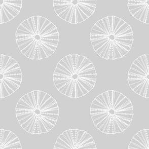 Modern Sea Urchin Gray and White