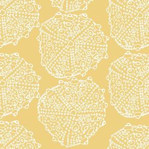 Coastal Modern Sun Yellow Sea Urchin