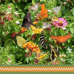 Butterfly Bouquet Stripe