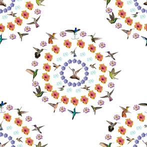 Hummingbird Mandala