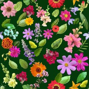 Late June In The Garden Green