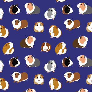 Guinea Pigs on Navy Blue - large scale
