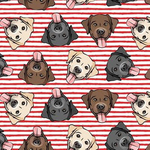 all the labs - cute happy labrador retriever dog breed - red stripes - LAD19