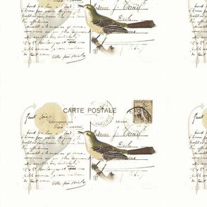 aviary letter- grey green tones