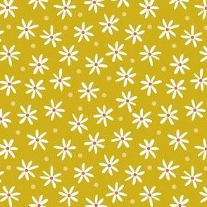 Daisy Meadow Mustard (Prairie)