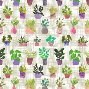 House Plants on Grid - Stylized Collage Plants