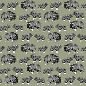 SMALL - musk ox fabric // arctic animal fabric canada alaska greenland - artichoke