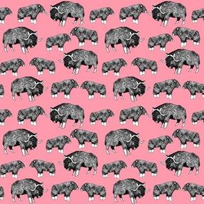 SMALL - musk ox fabric // arctic animal fabric canada alaska greenland - flamingo pink