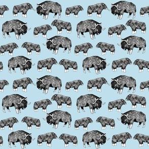 SMALL - musk ox fabric // arctic animal fabric canada alaska greenland - light blue