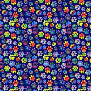 Rainbow Pawprints on Blue - Small