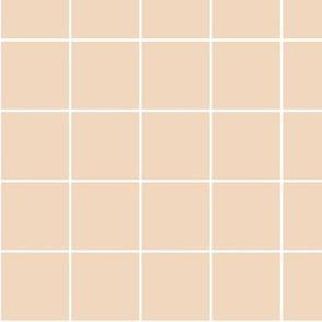 Grid on Blush