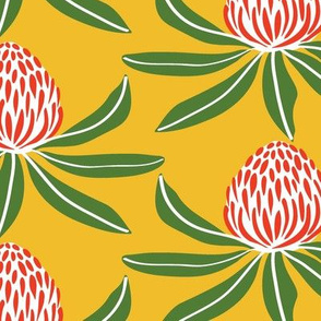 Waratahs Green Red Yellow