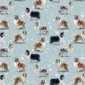 The Rough Collie