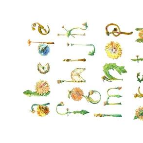 Dandelion-Alphabet---Spoonflower-Oct2019