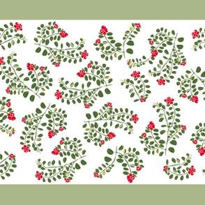 Lingonberry Green Stripe