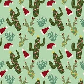 Christmas Holiday Cactus in Gree