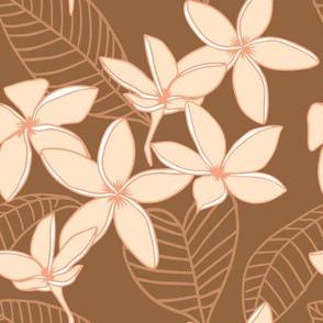 Blush Plumerias on brown