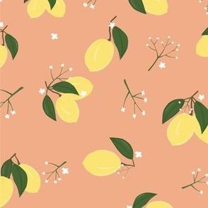 Lemons Zest Apricot