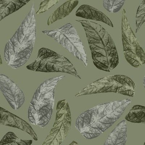 Leaves on mid green