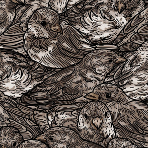A Dense Pack of Sparrows