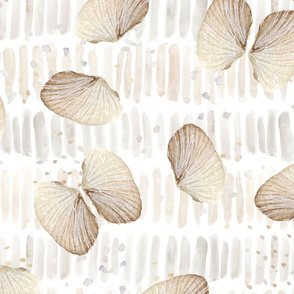 Angel Wing Shells and Horizontal Stripes