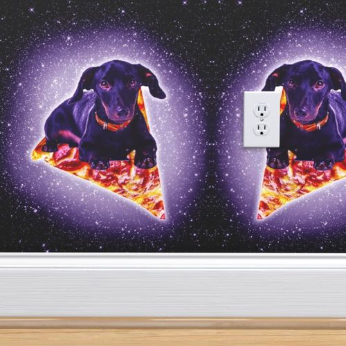 9308323 outer space galaxy dog riding pizza by