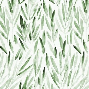 Khaki eucalyptus leaves • watercolor nature