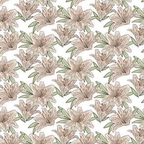 Soft Lilies