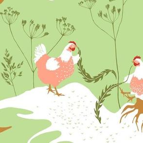 Chicken story