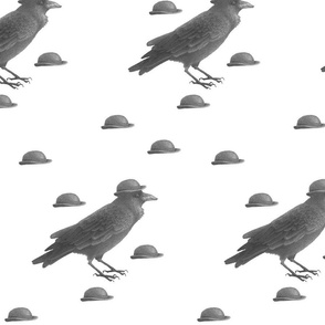 Bowler Hat Crow