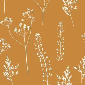 Grass/big/brown