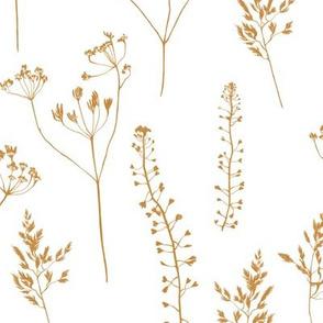 Grass/ big/ white