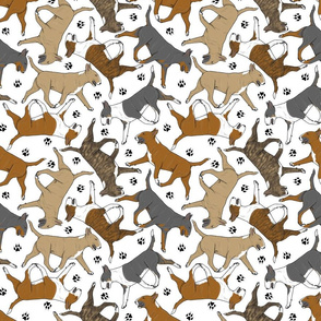 Trotting Bull Terriers colored and paw prints - white