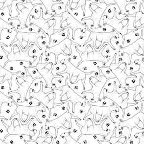 Trotting Bull Terriers white and paw prints - white