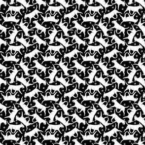 Tiny Trotting Bull Terriers white and paw prints - black